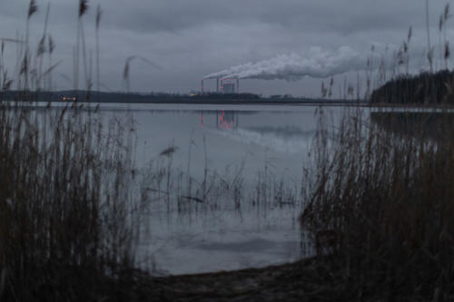 Fotoreportaż - Środowisko